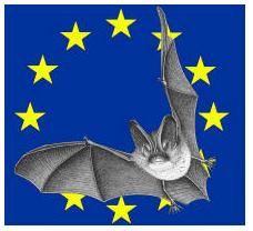 Le logo de la Nuit de la chauve-souris.