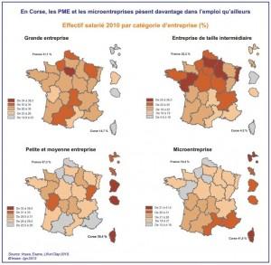 Le poids des différents types d'entreprises dans les régions françaises. (doc. Insee)
