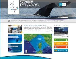 La page d'accueil du site internet français dédié au Sanctuaire des Pelagos: www.sanctuaire-pelagos.org (copie d'écran)
