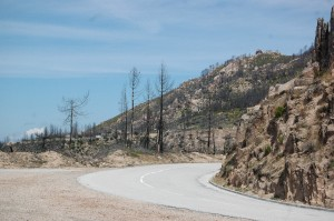 Les montagnes de l'Alta Rocca, après un incendie. (Photo Pierre-Yves Ratti)
